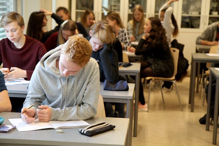 Ungdomsskoleelever